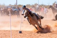 packsaddle-gymkhana-2019-29